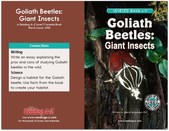 Goliath Beetles: Giant Insects book cover