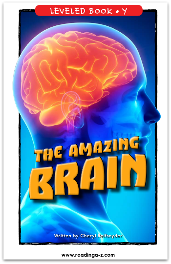 The Amazing Brain-CR