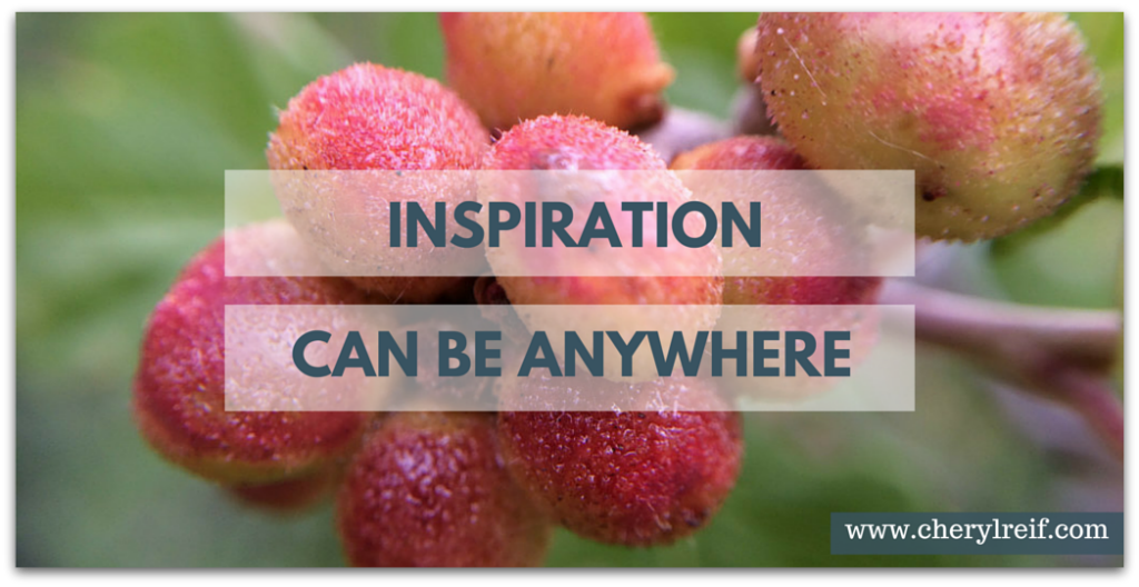 Inspiration Can Be Anywhere! (www.cherylreif.com)